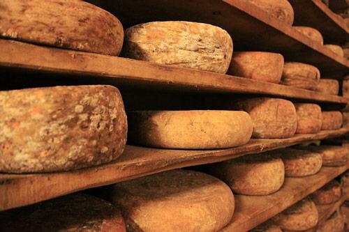 Les différents types de fromages en France